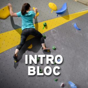 Intro Bloc